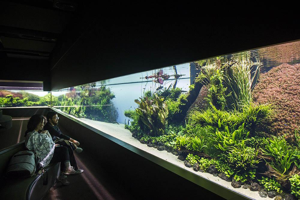 Temporary Exhibition 187 Exhibitions 187 Ocean 225 Rio De Lisboa