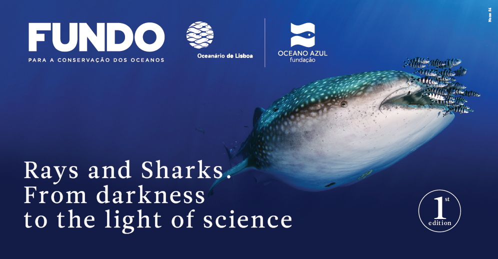 Ocean Conservation Fund | Oceanário de Lisboa and Oceano Azul Foundation | Rays and Sharks, From darkness to the light of science