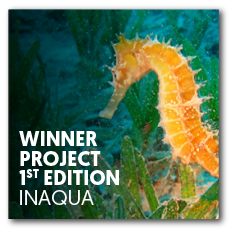Winner project 1st edition | InAqua: Oceanário de Lisboa