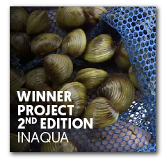 Winner project 2nd edition | InAqua: Oceanário de Lisboa