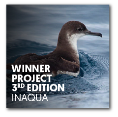 Winner project 3rd edition | InAqua: Oceanário de Lisboa